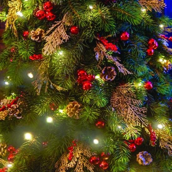 Open Everyday Through Christmas